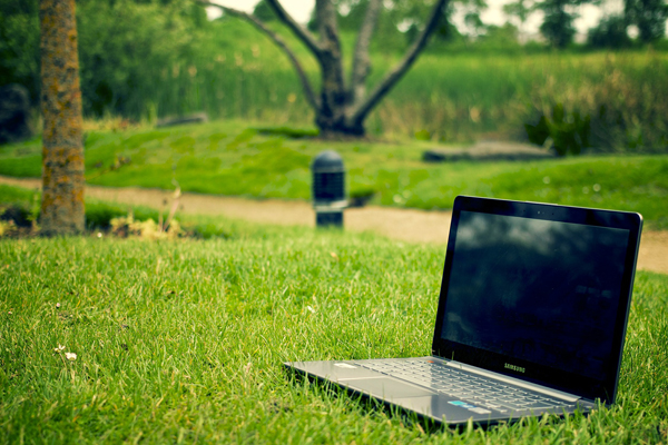 3 tips på hur ditt företag blir snällare mot miljön.