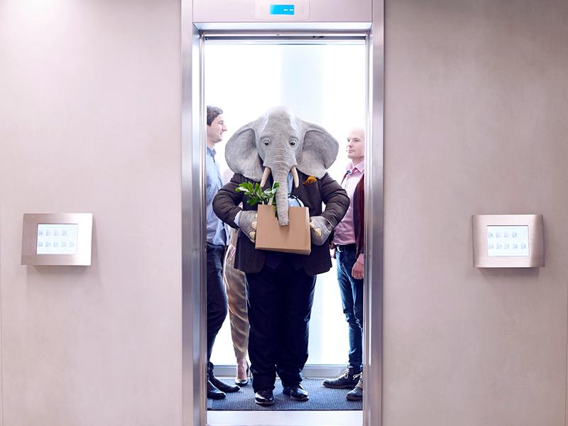Automatisera bort manuella rutiner genom att prata om elefanten i rummet.